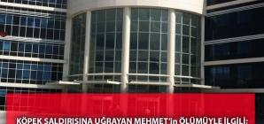 Köpek Saldırısına Uğrayan Mehmet'in Ölümüyle İlgili; Kayseri Cumhuriyet Başsavcılığından Açıklama
