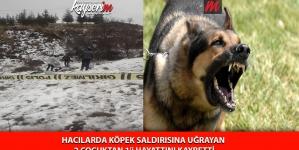 Hacılarda Köpek Saldırısına Uğrayan 2 Çocuktan 1'i Hayatını Kaybetti